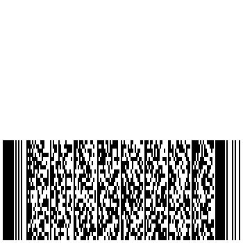 PDF417 2D Barcode