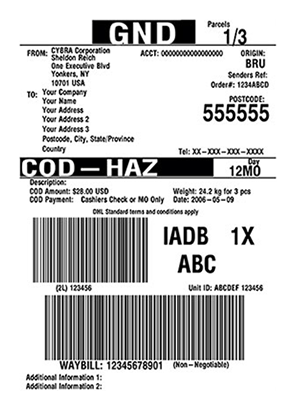 Design and print DHL shipping labels with JMagic